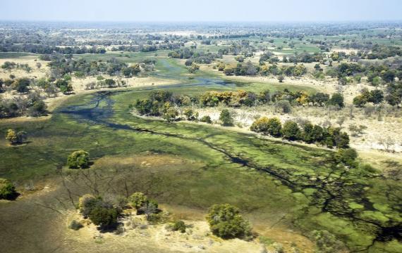 El Delta del Okavango