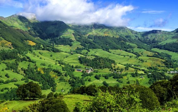 Cantal, un mar de vegetaci�n, Francia