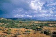 Antsirabe, Ambositra y Fianarantsoa,