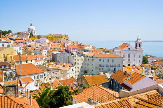 El baul de los tesoros - Banarse con delfines portugal ...