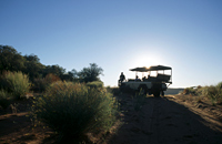 Sun City Tswalu Private Game Reserve